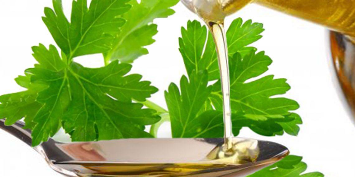 Warzywna pielęgnacja? Poznajcie olejek z nasion pietruszki